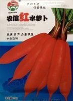 Cheap Vegetable seeds radish seed ginseng PCS Bag 25g Original Packaging Home Garden Bonsai Tree Decor Pots Planters Free Shipping