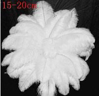 Wholesale white black ostrich plumes feathers DIY feather trim boa wedding party decor color optional inch cm