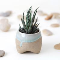 ceramic flower pots - Special Jingdezhen Ceramic flower pot plants pots desktop container with a leaking hole floriculture