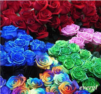 Wholesale 70Pcs Rare Rainbow Rose Flower Seeds Your Lover Multi color Plants Home Garden