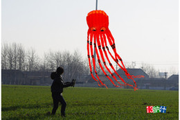 Wholesale New D m tube shaped parafoil octopus kite children toy single line kite