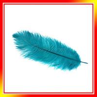 Wholesale Teal Blue Natural Ostrich Feathers quot quot cm cm Wedding Party DIY Decor Hat Decor Colors Fan MakingNew
