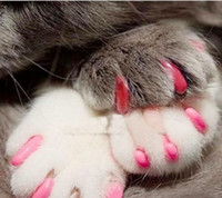 Wholesale 100pcs New Pet Dog Nail Sets Soft Claws Nail Cap Cat Paw Caps Pet Nail Cap Colors Size XS S M L XL XXL