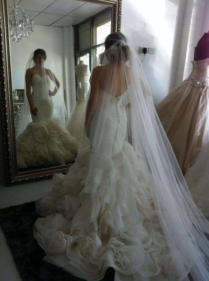 Wedding veils simple long tulle veils with blusher and for Long veil wedding dresses