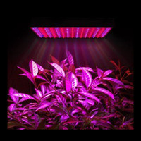 Wholesale High qulity Plant Grow Light Quad band W Led Lamp Lights Plant Growing Lamp blue and red light