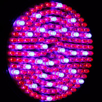 Wholesale High qulity Plant Grow Light Quad band W E27 Led Lamp Lights Plant Growing Lamp blue and red light