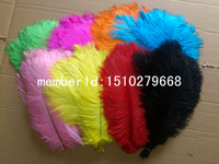 Wholesale Factory direct sale CM quot beautiful Ostrich Feather Plume wedding decoration