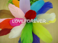 Wholesale 300 DIY Natural Fluffy goose Feathers colors home Christmas Cosplay decoration clothing shoes hat accessories FREE SHIP