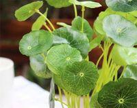 Wholesale NEW Silk Green Plant Money Leaves cm quot Length Artificial Lotus Leaf Plants Stems Home Christmas Showcase Decorations