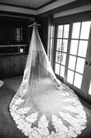 Wholesale Irresistible Cathedral Length Bridal Veils Huge Lace Applique Tulle Long Wedding Veil
