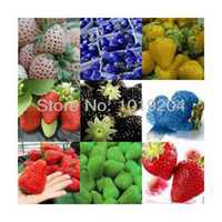 Cheap Free shipping (9 packets), 9 kinds of strawberry seeds 900 PCS + 100 seeds per bag, plants, gift