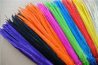 Wholesale inch off white orange black Hot Pink royal blue purple red yellow turquoise Ringneck Pheasant Tail Feather