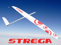 Cheap RCRCM Strega,fiberglass rc gliders,wingspan 2.9m,six color selectable