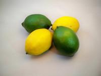 artificial lemon - Best Artificial Lemons Best Artificial Limes Decorative Fruit