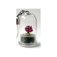 pet strap - Mixed Designs Baby tree Cell Phone Strap Portable farm mini garden plant pet car decoration