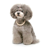 luxury pet products - Pet Products Dog Supplies Pet Charm Dog Necklace Luxury Pearl Princess Necklace Dog Necklace Rhinestone