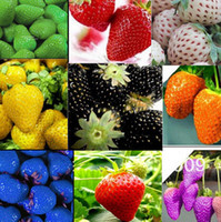 Wholesale 1000pcs strawberry seeds vegetable Fruit seed of a strawberry seedlings balcony plants garden planting IZ0005