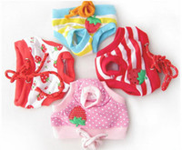 Wholesale Female Pet Dog Puppy Sanitary Cute Short Dog Panty Pant Striped Diaper Underwear For