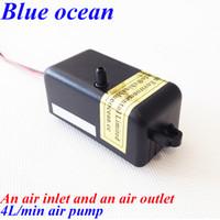 Wholesale BO AP AC220V AC110V L min air pump for ozone generator or aquarium aquiculture Ozone generator air pump fish tank oxygenation device