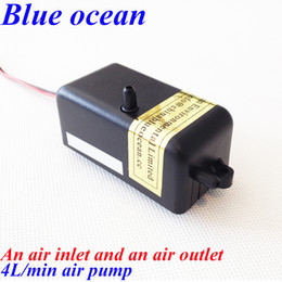 Wholesale BO AP AC220V AC110V L min air pump for ozone generator or aquarium aquiculture Ozone generator air pump fish tank oxygenation device