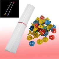 Wholesale Party Festival Appliance Plastic Balloon Sticks w Cups