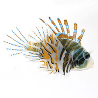 plastic ornament - Aquarium Plastic Floating Colorful Glowing Wiggling Tail Lionfish Ornament