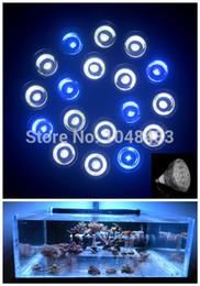 Wholesale New E27 W X3W Kits LED Aquarium Lamp Cree Coral Reef Grow Light Fixture High Power Fish Tank Dsuny Coral Reef LED Bulbs