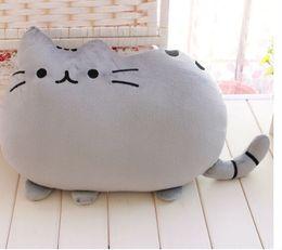 Wholesale cm plush toy stuffed animal doll anime toy pusheen cat for girl kid kawaii cute cushion brinquedos PH14101