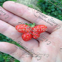 Cheap Free shipping (1packets),DIY Home and Garden Fruits and vegetables seeds strawberry seeds + 200 seeds, plants, gift