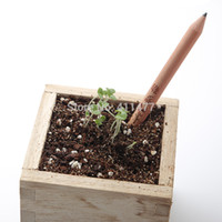 Wholesale New Arrival Pencil With A Seed Sprout Pencil With Herb Pack Flower Pack Rainbow Pack Seed