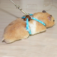 bell carrier - topProducts Pet Rat Mouse Hamster Bird Ferret Adjustable Harness Lead Leash Collar Rope Bell Save up to