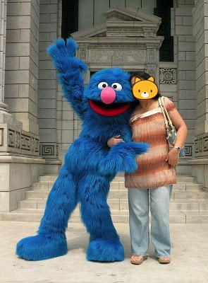 Oisk Customized Sesame Street Rosita Zoe Red Elmo Grover ...