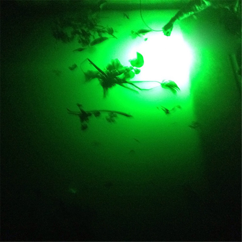 led flounder fishing lights fishing led lights underwater. Black Bedroom Furniture Sets. Home Design Ideas