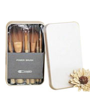 Iron Box Makeup Brush Set