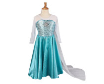 Elsa Princess Dresses