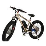 Electric Bikes & Parts