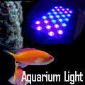 Waterproof LED  Lights for Pool and Aquarium