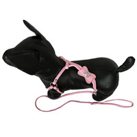 Durable Nylon Dog Leashes in 4 Different Colors