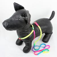 Safe Dog Harness with Leashes in Rainbow Color