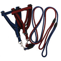 Durable Nylon Pet Leashes and Harness 2 Colors