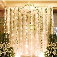 300 LED light 3m*3m Curtain Lights Christmas Ornament Weddin...