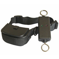 Pet Dog Remote and Leash training System