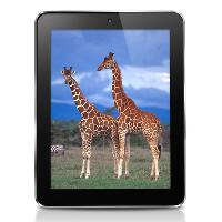 8&quot; Cube U9GT3 Android 4. 0 Dual Core Tablet PC - RK3066 ...