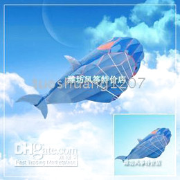 Dolphin Kite single software