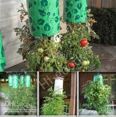 topsy turvy tomato planter - Topsy Turvy Tomato Planter As Seen on UPSIDE DOWN