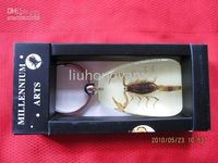 Wholesale amber insect keychain and car keyring accessory with different lovely insect specimen in amber