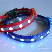 Wholesale 2010newest Pet Products LED dog collar flashing dog collar