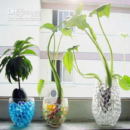 Wholesale Magic Crystal Soil Water Growing Mud Soil Water Beads For Plant Flower