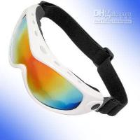 Wholesale Sports Plastic Frame Skiing Snowboard Goggle Glasses tyt