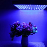 Wholesale Thriving LED Heightening Energy Saving For Hydroponics Indoor Plant Grow Grow Light Lamp red Bulb